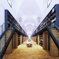 Manica Lunga Library 03