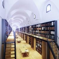 Manica Lunga Library 04
