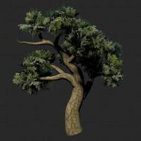 TreePainter 22